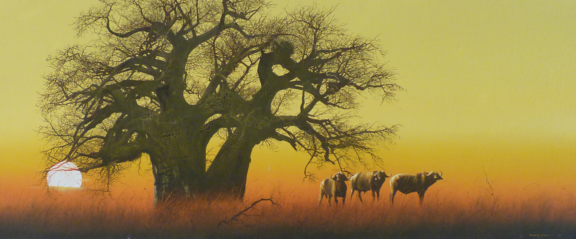 Untitled (Buffalo With Baobab Tree At Sunset) 1983
