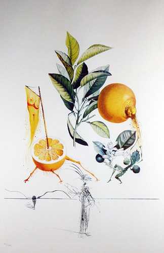 FlorDali, Les Fruits Grapefruit 1969