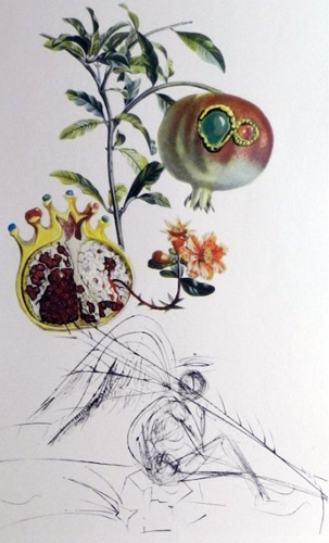 Flordali / Les Fruits Pomegranate 1969 by Salvador Dali
