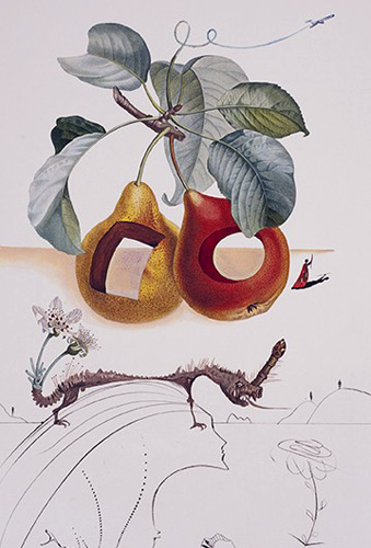 Fruits Trouas Flora Dalinae Les Fruits 1970 by Salvador Dali