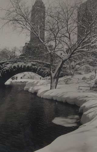 Scene with Bridge in Central Park