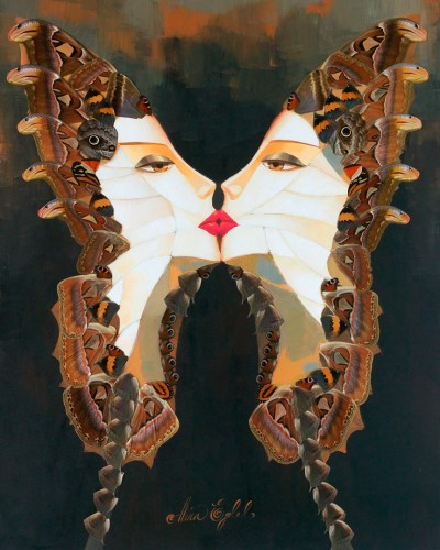 Atlas Attacus Butterfly Kiss 2013