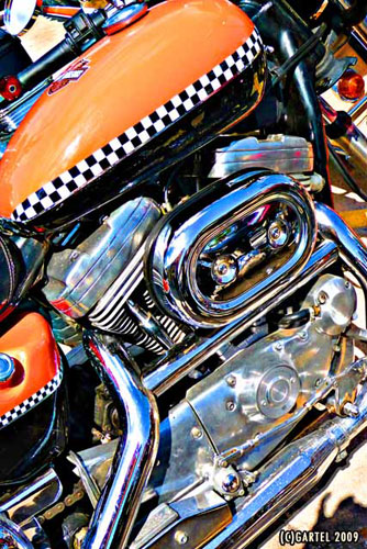 Checkered Bike