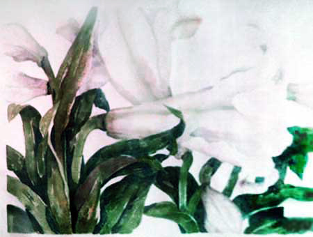 Lily Watercolor 1982 45x72