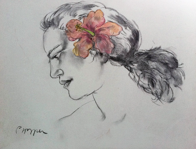 Pink Hibiscus Drawing 2002