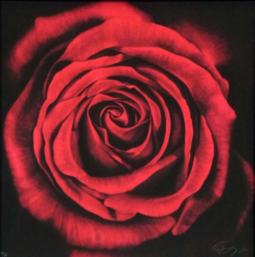 Untitled (Rose From Ophelia) 2005