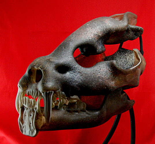Saber Toothed Cat Skull Unique Glass Sculpture 2010