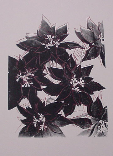 Poinsettias IIA.21b 1983