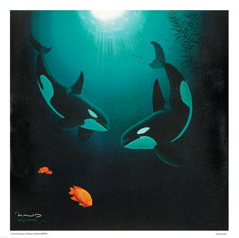 In the Company of Orcas 2000